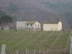 Campagna di Tredozio (Foto Domenico)