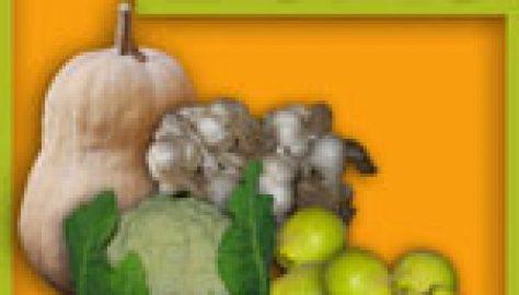 A semenzaio il cocomero bianco