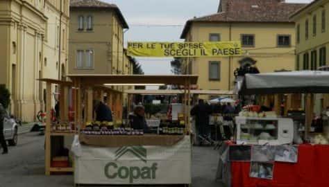Festa della Fiorentina (4)