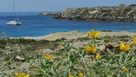 Isola di Favignana (Egadi - Tr)