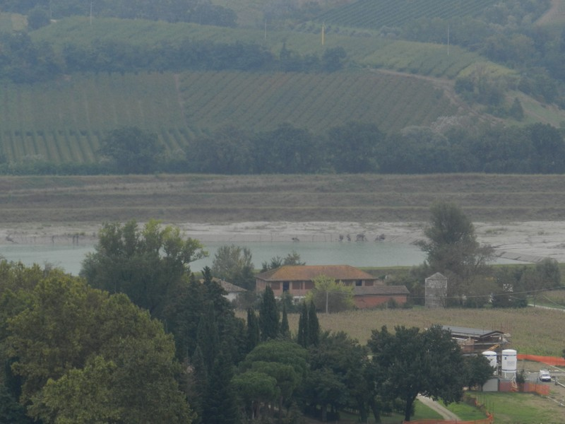 Cassa di espansione del Senio a Cuffiano