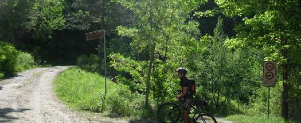 Bici e collina