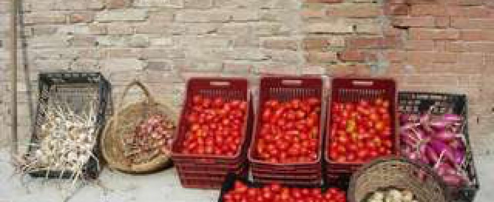 Cavoli e passata di pomodoro