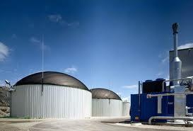 Si discute sulla centrale a biomasse