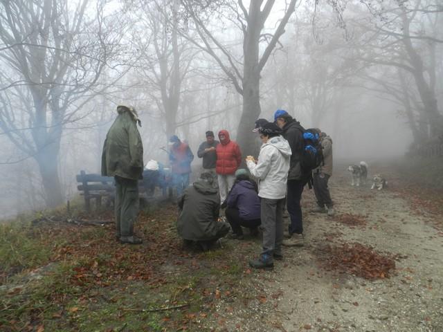 Il Tramazzo, dove la nebbia smarrisce i cani