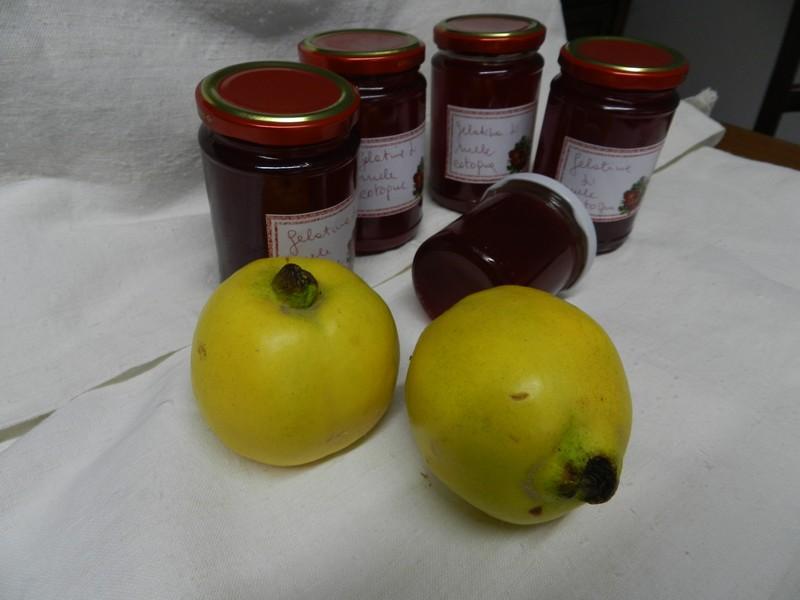 Gelatina di mele cotogne 003
