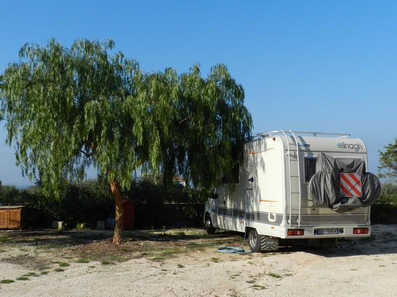 Camper sotto l'albero del pepe