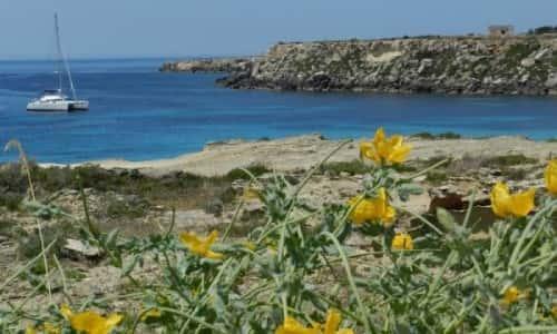 Sicilia in camper: da Marsala a Favignana
