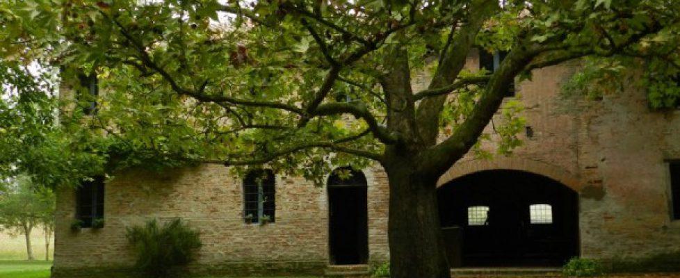 Alfonsine - La casa dell